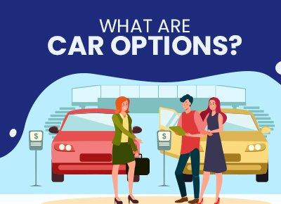 Car Trim Options