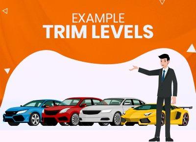 Example Trim Levls