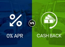 low apr vs cash back